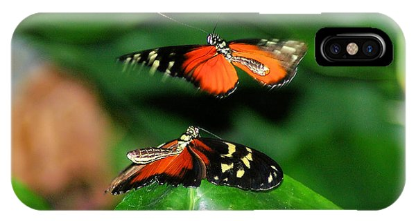 Little Things iPhone Case - Two Butterflies  by Jeff Swan