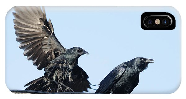 Two Crows On A Wire IPhone Case