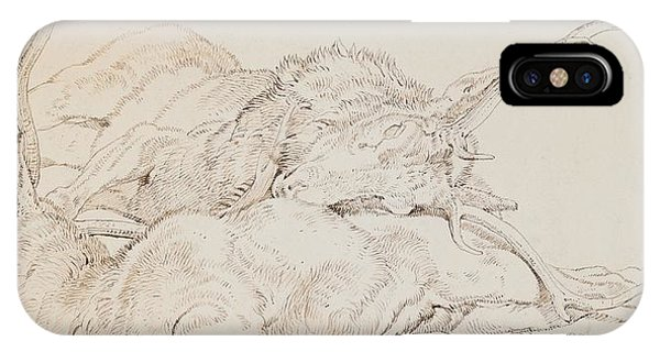 Two Dead Stags IPhone Case
