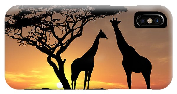 Giraffe iPhone Case - Two Giraffes by James Ashley