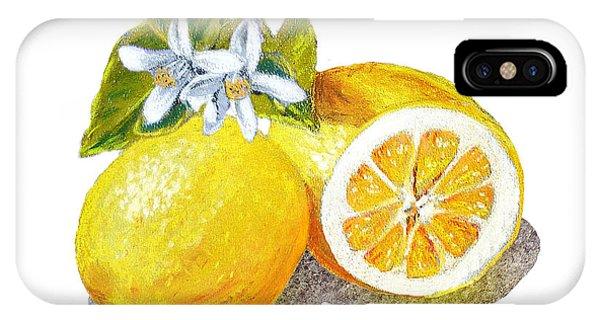 Lemon iPhone Case - Two Happy Lemons by Irina Sztukowski