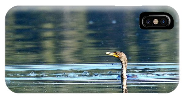 Two Headed Cormorant Phone Case by Rich Rauenzahn