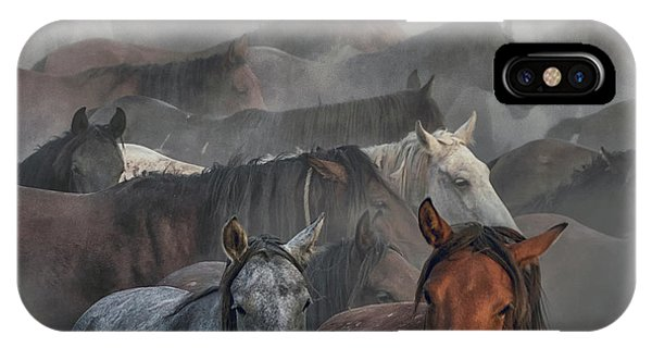 Dust iPhone Case - Two Horses by H??seyin Ta??k??n