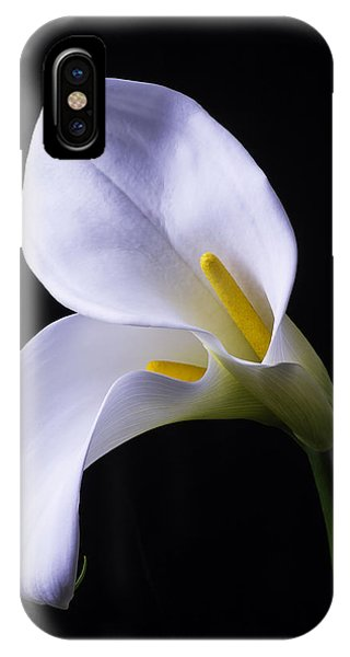 Design iPhone Case - Two In Love by Garry Gay