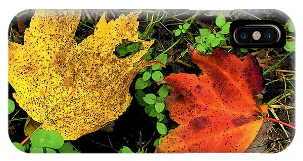 Two Leaves IPhone Case
