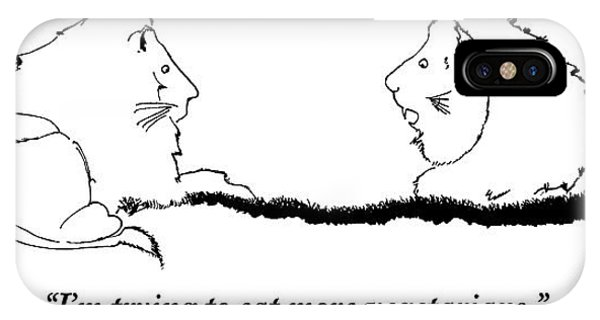 Two Lions Sit Conversing IPhone Case
