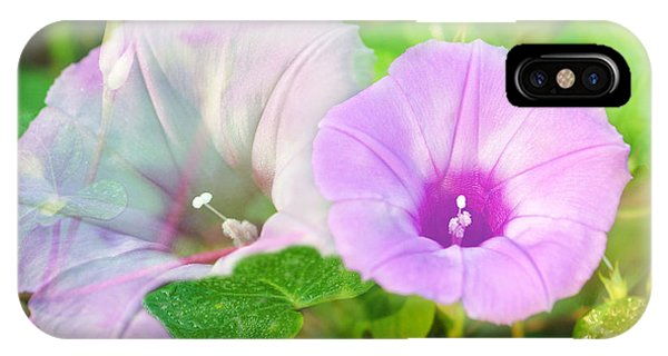 Two Morning Glories IPhone Case