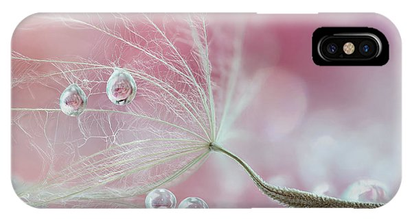Reflection iPhone Case - Two Of Us by Rina Barbieri