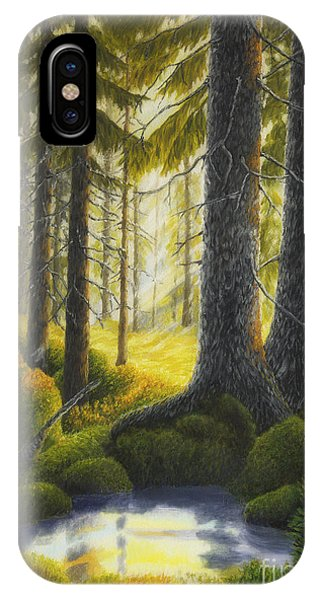 Spruce iPhone Case - Two Old Spruce by Veikko Suikkanen