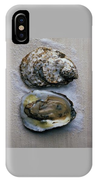 Two Oysters IPhone Case