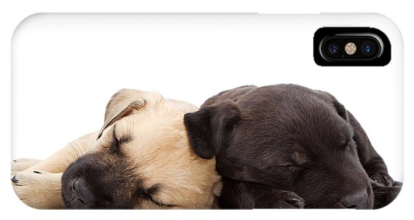 Yellow Lab iPhone Case - Two Sleeping Puppies Laying Together  by Susan Schmitz