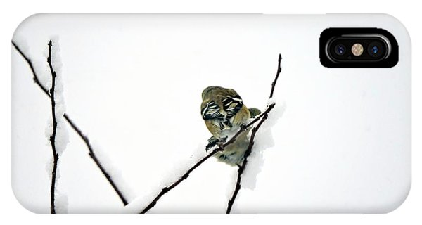 Two Sparrows IPhone Case
