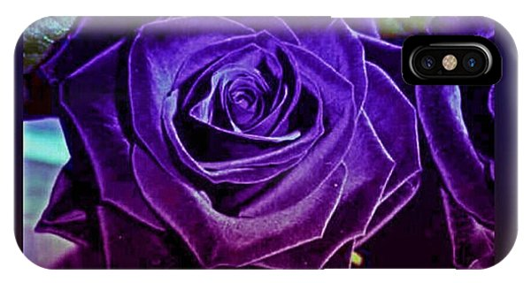 Mirror Series | Roses in Bi-Color Red and Purple with Orchids |Two Tone Lavender Roses