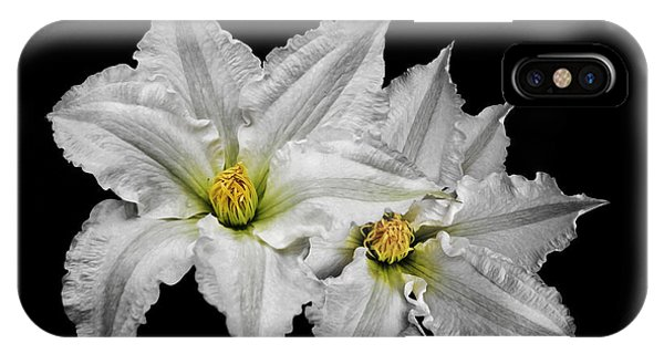 Two White Clematis Flowers On Black IPhone Case