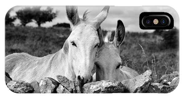 Two White Irish Donkeys IPhone Case