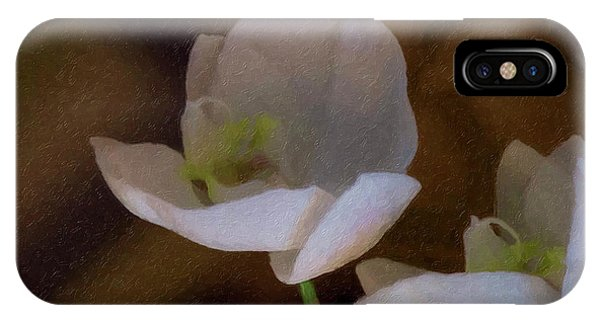 Two White Orchids IPhone Case