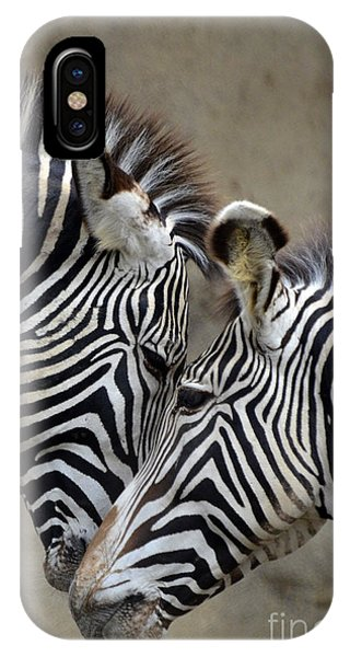 Two Zebras IPhone Case