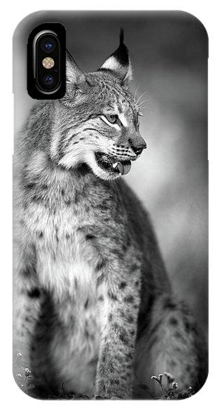 Lynx iPhone Case - U N I Q U E by Fegari