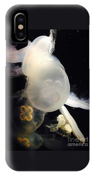 Umbrella Jellyfish 1 Shot At Long Beach California Aquarium By Richard W Linford IPhone Case