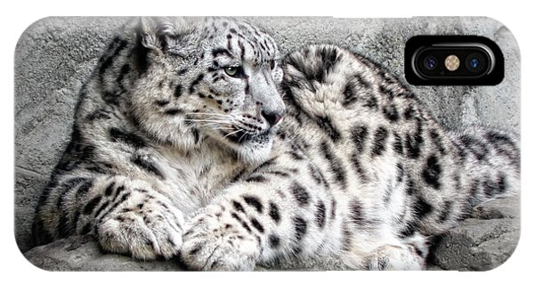 Snow Leopard iPhone Case - Uncia Uncia by Joachim G Pinkawa