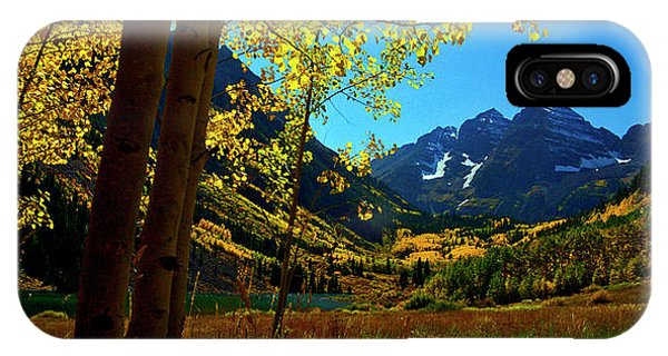 Under Golden Trees IPhone Case
