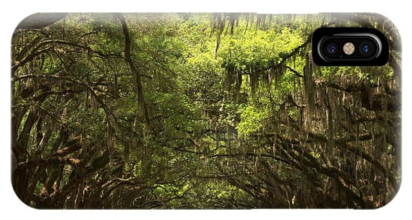 Under The Ancient Oaks IPhone Case