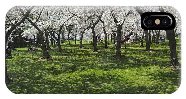 Under The Cherry Blossoms - Washington Dc. IPhone Case