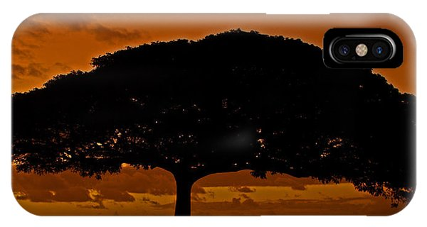 Under The Monkeypod Tree IPhone Case