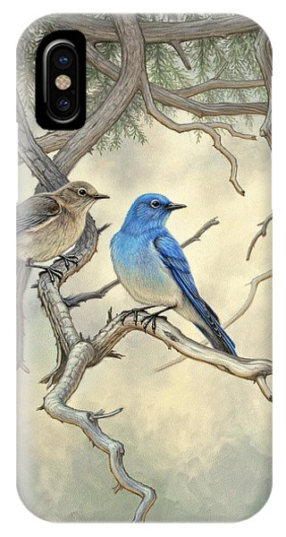 Yellowstone iPhone Case - Under The Old Juniper-mountain Bluebirds by Paul Krapf