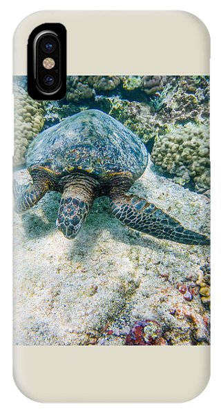 Swimming Turtle IPhone Case