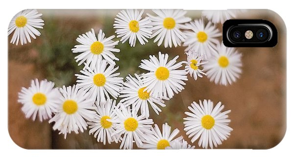 Unidentified Daisy IPhone Case