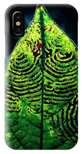 Unidentified Fungus On Rain Forest Leaf Phone Case by Dr Morley Read/science Photo Library
