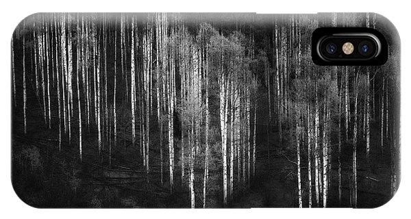 Birch Tree iPhone Case - Untitled by Atul Chopra