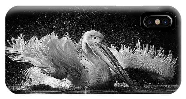 Pelican iPhone Case - Untitled by C.s. Tjandra