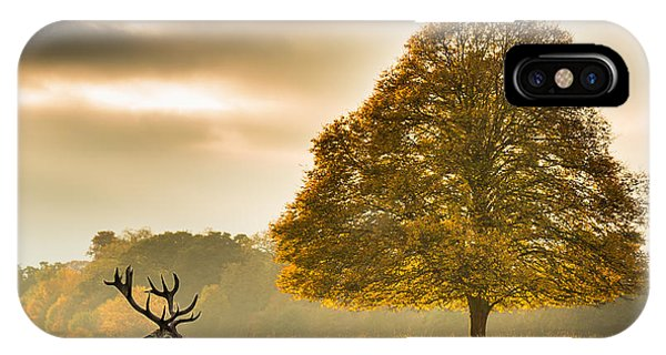 Stag iPhone Case - Untitled by Tudor Amot