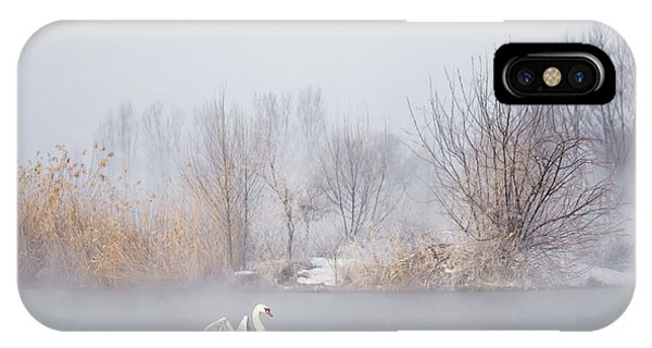 Swan iPhone Case - Untitled by Uu