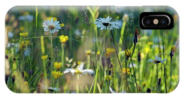 Upland iPhone Case - Upland Meadow by Simon Fraser/tarset Archive Group/science Photo Library