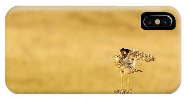 Upland iPhone Case - Upland Sandpiper Near Bowman, North by Chuck Haney