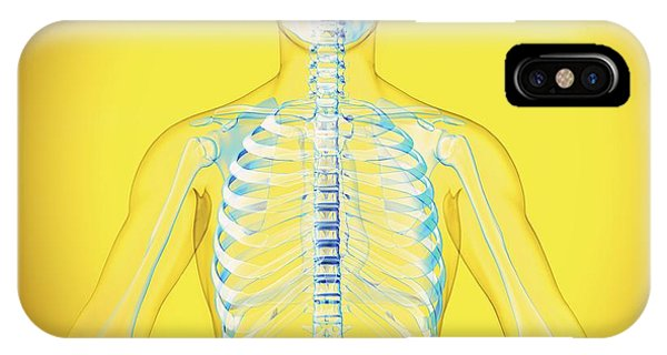 Upper Body Phone Case by Claus Lunau/science Photo Library