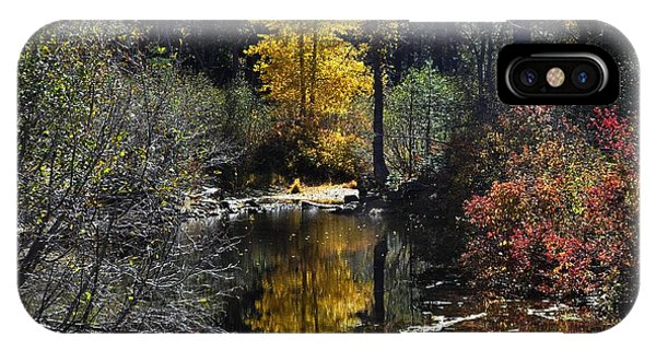 Upper Truckee River Autumn IPhone Case