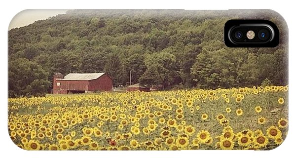 Florals iPhone Case - Upstate by Mike Maher