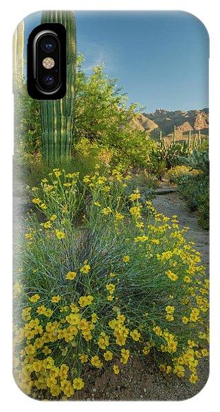 Coronado iPhone Case - Usa, Arizona, Coronado National Forest by Jaynes Gallery