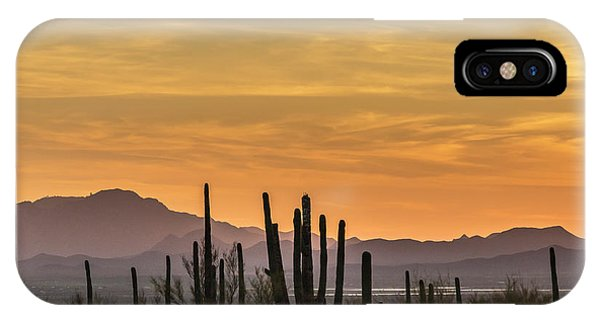 Usa, Arizona, Tucson Mountain Park IPhone Case