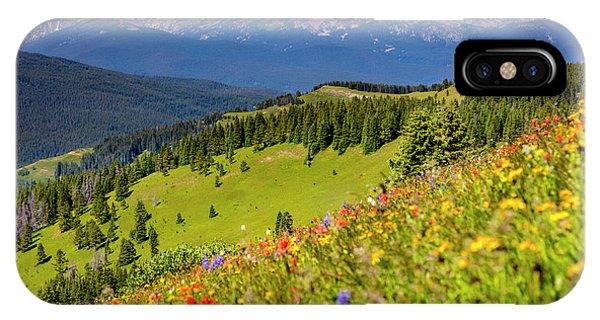 Treeline iPhone Case - Usa, Colorado, Shrine Pass, Vail by Jaynes Gallery