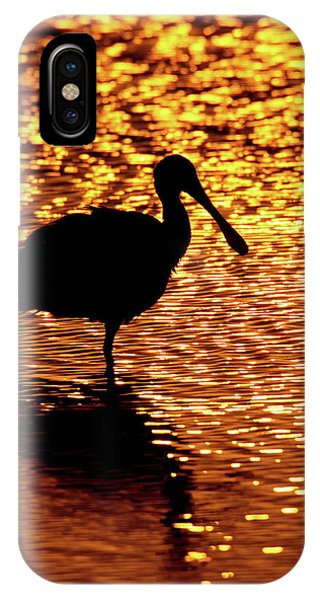Usa, Florida, Vierra Wetlands IPhone Case