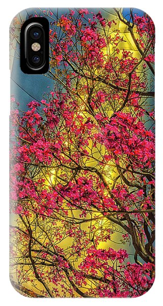 Gehry iPhone Case - Usa, Los Angeles, Ca, The Disney Center by Rona Schwarz