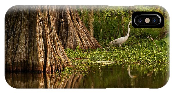 Bald Cypress iPhone Case - Usa, Louisiana, Lake Martin by Jaynes Gallery