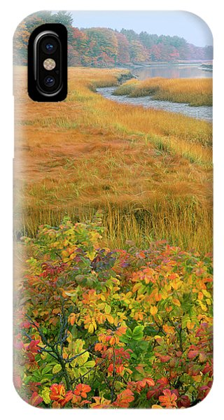 Tidal Marsh iPhone Case - Usa, Maine, Kennebunkport by Jaynes Gallery