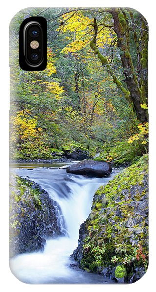 Basalt iPhone Case - Usa, Oregon Bigleaf Maple (acer by Gary Luhm