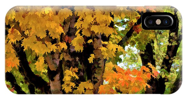 Deciduous iPhone Case - Usa, Oregon, Scottsburg by Jaynes Gallery